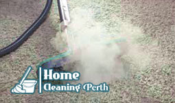 Carpet Cleaning Wangara 6065