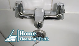 professional cleaners perth