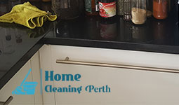 professional cleaning perth